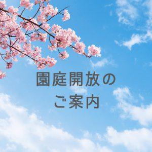 3月29日(月)園庭開放のご案内